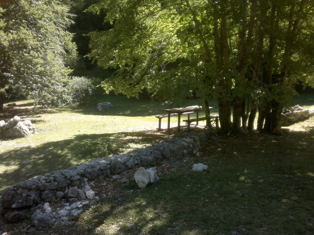 Area attrezzata demaniale Casale.jpg