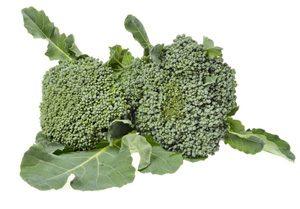Cavolo-broccolo-sparacello-palermitano.jpg