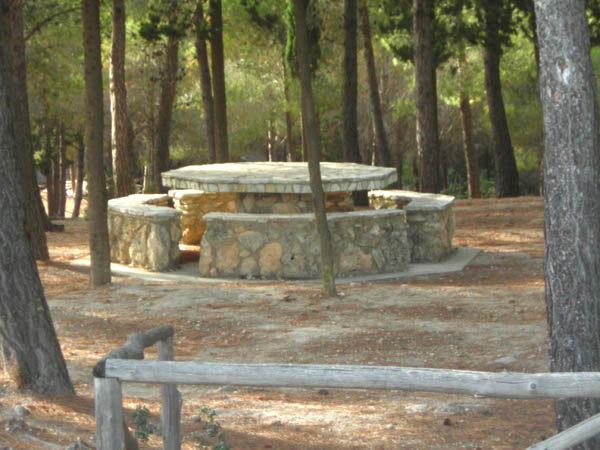 Area attrezzata demaniale Costa Domini.jpg