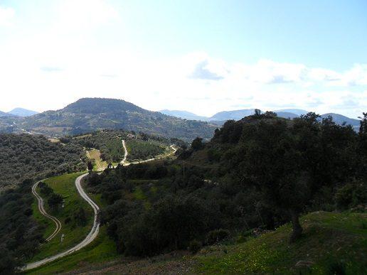 Calatafimi-Segesta-Area-Attrezzata-Bosco-Agimbè.jpg