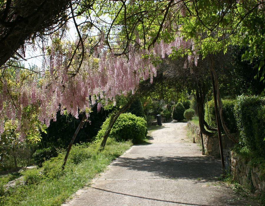 Parco_suburbano.jpg