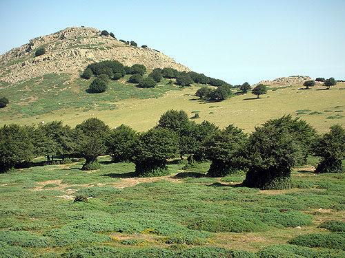 Monte Catarineci.jpg