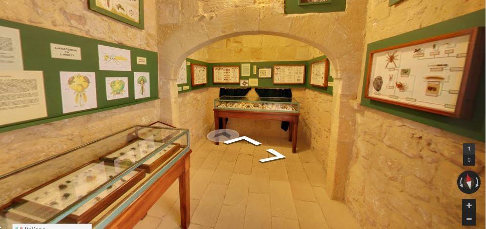 museonaturale (foto: street wiew)