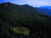 Valle del Fiume Caronia, Lago Zilio.jpeg