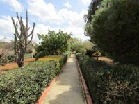 argotti botanic garden.jpg