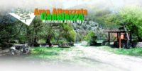 canalazzo.jpg