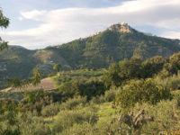 Riserva Naturale Orientata Monte S. Caloggero (Kronio).jpg