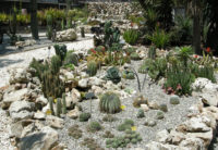 Orto Botanico.jpg