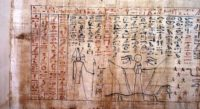 grande-papiro-museo.jpg