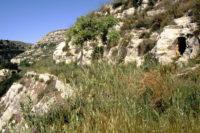 grotta-del-gigante.jpg
