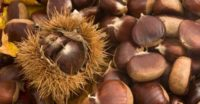 castagne_cuocere.jpg