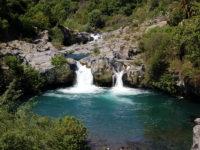 Parco Fluviale dell'Alcantara.jpeg
