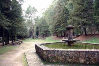 Riserva Parco Ronza.jpg