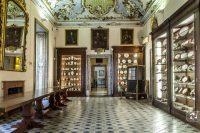 Palazzo Asmundo di Sessa - Palermo.jpg