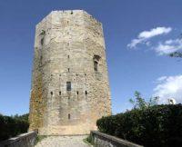 Torre-di-Federico-II3.jpg