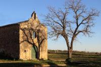 Mazzarino-Chiesa-Santa-Maria-delle-Grazie.jpg