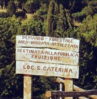 Area attrezzata demaniale Santa Caterina.jpeg