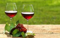 vino-rosso (1).jpg