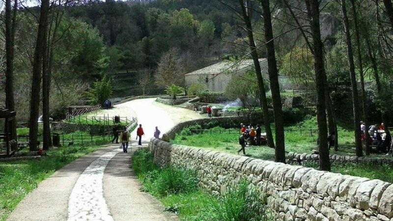 Parco.Calaforno2