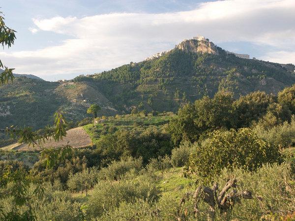 riserva-naturale-orientata-monte-s-caloggero-kronio