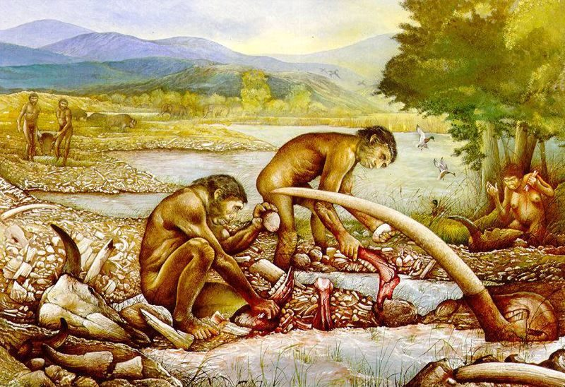 Siti archeologici del paleolitico e del mesolitico siciliani for Planimetrie della caverna dell uomo
