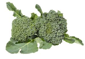 cavolo-broccolo-sparacello-palermitano