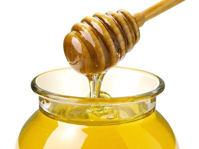 miele-delle-egadi